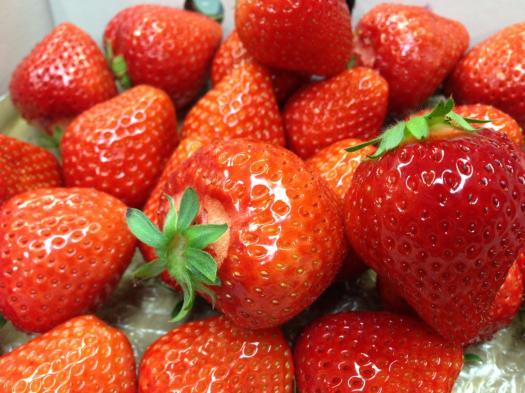 イチゴ.JPG